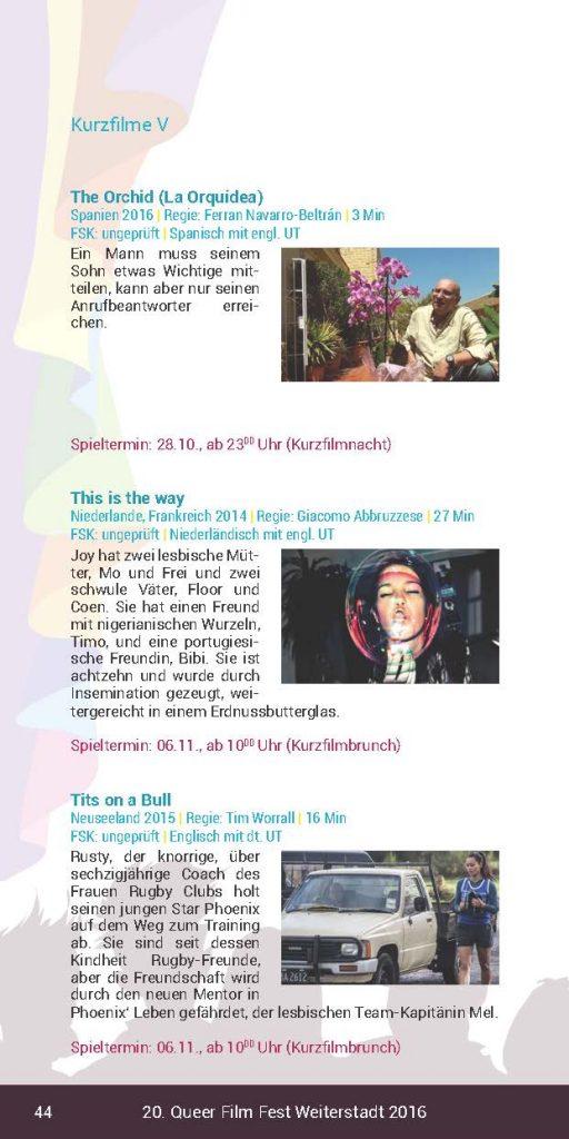 https://www.queer-weiterstadt.de/wp/wp-content/uploads/2017/01/Booklet2016_Seite_44-512x1024.jpg