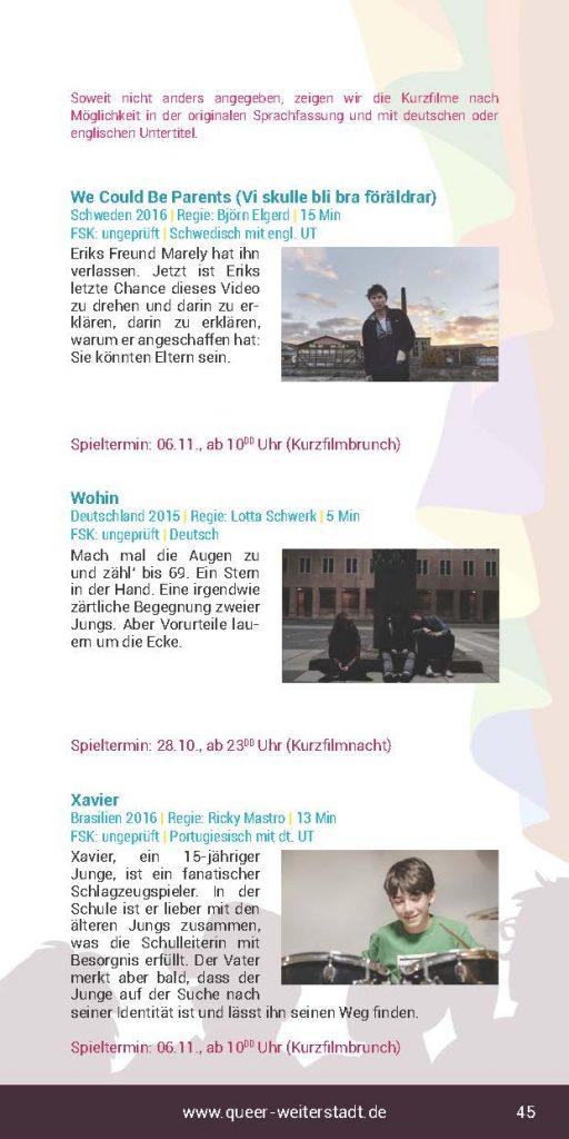 http://www.queer-weiterstadt.de/wp/wp-content/uploads/2017/01/Booklet2016_Seite_45-512x1024.jpg